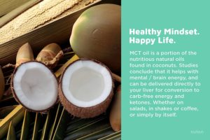 Nuton Brainfood Coconut