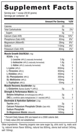 NutraBio Natural Series Intra Blast Ingredients