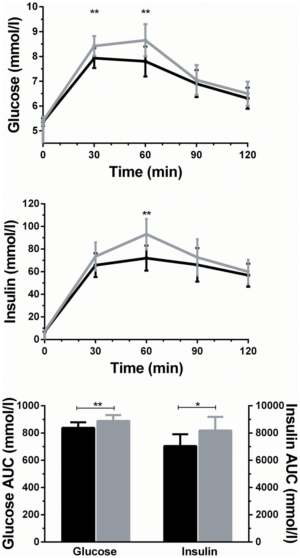 Olive Leaf Extract OleuropeinHydroxytyrosol Benefits