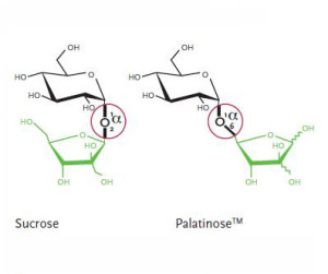 Palatinose Structure