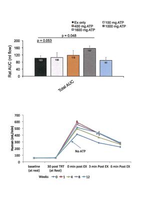 Peak ATP Rathmacher Study