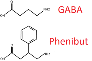 Phenibut GABA Comparison