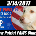 PricePlow Patriot Paws Day