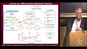 Reactive Oxygen Species Mitochondrial Dysfunction Cancer Seyfried