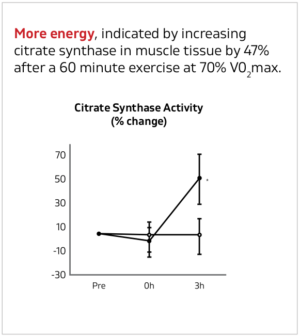 Senactiv Energy