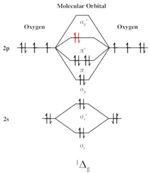 Singlet Oxygen