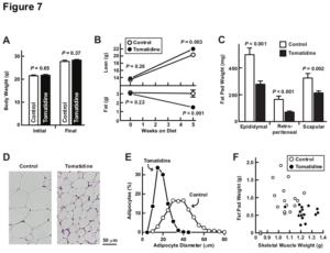Tomatidine Study Figure 7