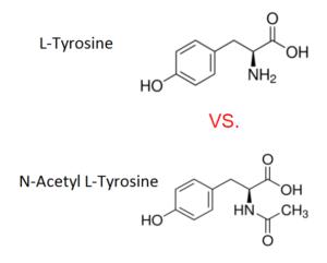L-Tyrosine vs N-Acetyl L-Tyrosine