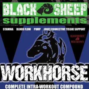 Workhorse Supplement