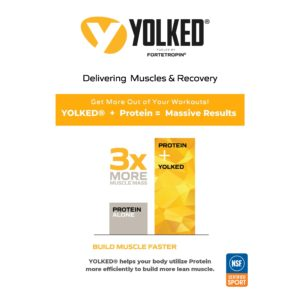 Yolked Recovery