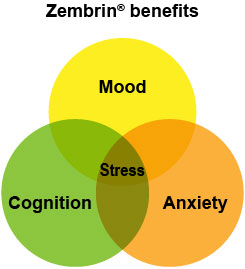Zembrin offers everything you want in a nootropic...better focus, mood, and cognition, all with less stress and anxiety. Image courtesy Zembrin.com