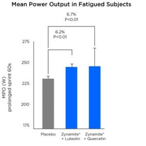 Zynamite Power Output Graph